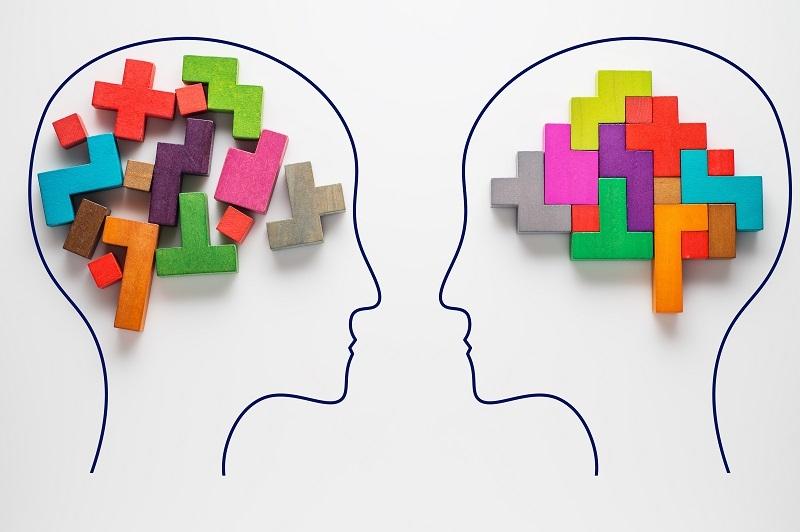 Que es la inteligencia fluida